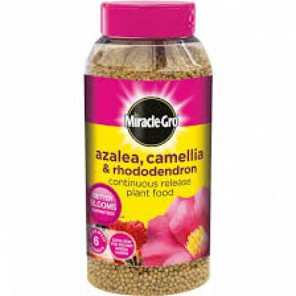 Miracle-Gro azalea, camelia, rhododendron plant food 1kg