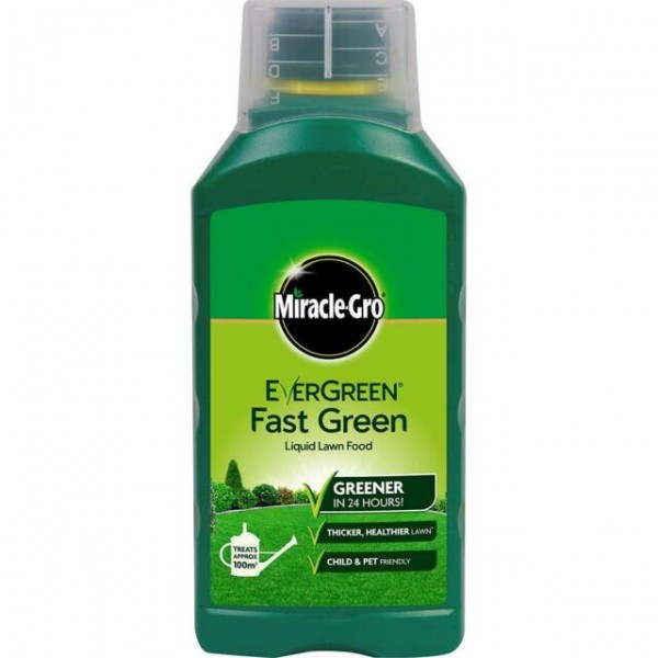 Evergreen Fast Green liquid - 100m2