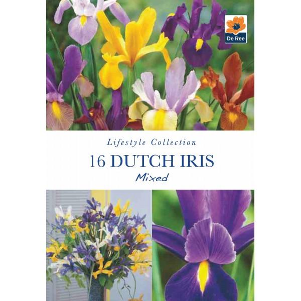 De Ree Iris Dutch Mixed