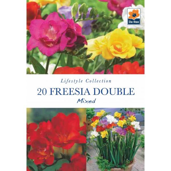 De Ree Freesia Double Mixed