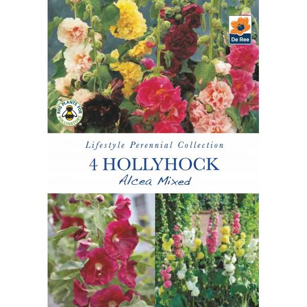 De Ree Hollyhock Alcea Mixed