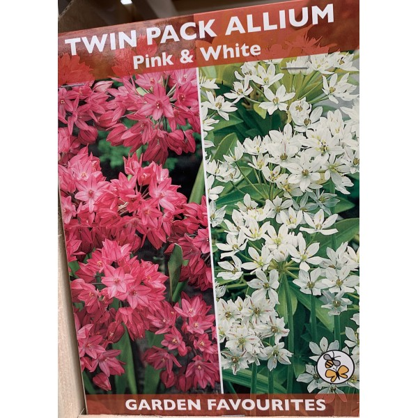 Twin Pack Allium Pink & White - 20 per pack