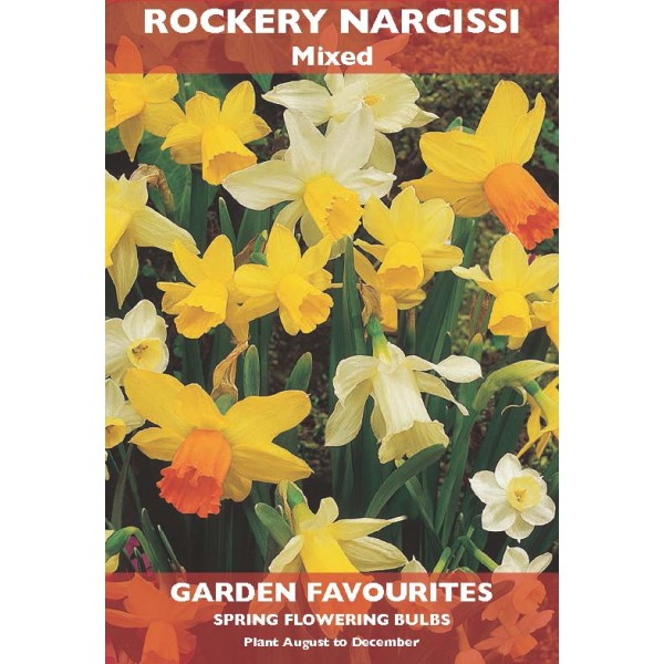 Rockery Narcissi Mixed - 6 Bulbs per pack
