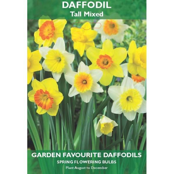 Daffodil Tall Mixed - 6 Bulbs per pack