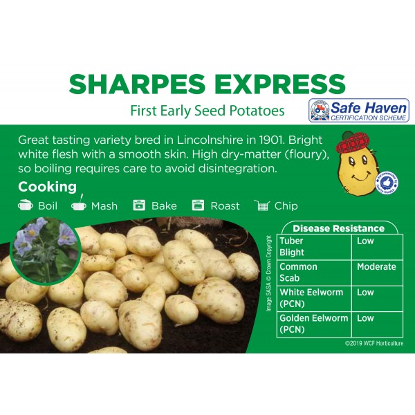 Seed Potatoes - FIRST EARLY - Sharpes Express x5