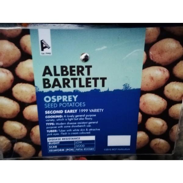 Premium Seed Potatoes - Osprey x5