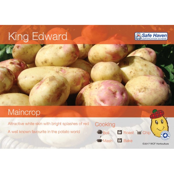 Seed Potatoes - MAINCROP - King Edward x5