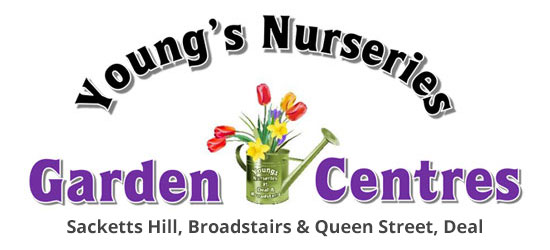 Youngs Nurseries